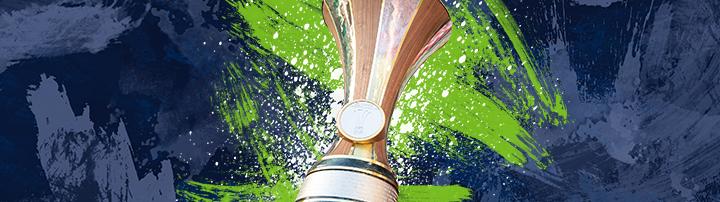 öfb Pokal